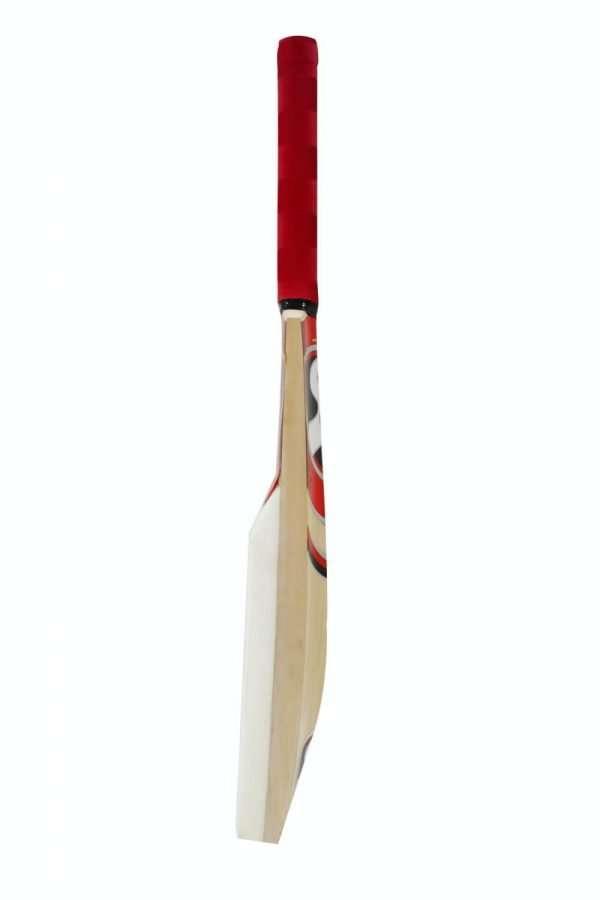 catch bat